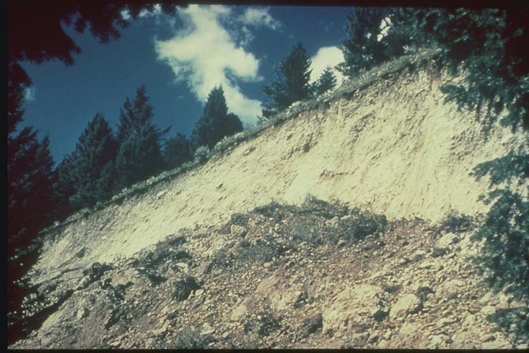 Fault scarp near Hebgen Lake, Montana