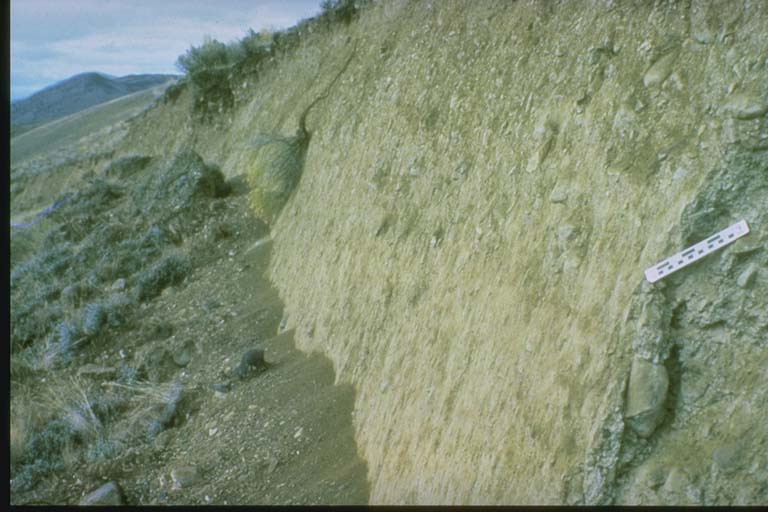 Fault scarp caused by Borah Peak, Idaho earthquake