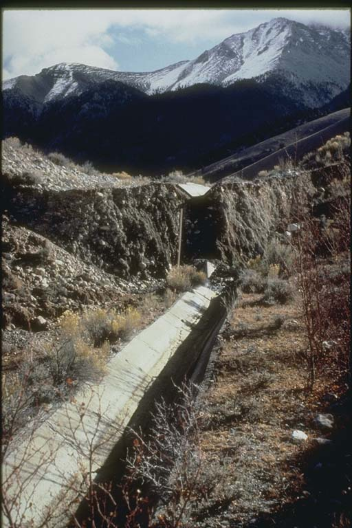 Fault scarp and horizontal offset near Dickey, Idaho