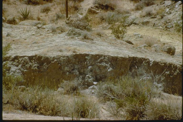 Oblique-slip fault scarp at Flamingo Heights, California