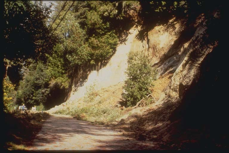 Landslide, Scott's Valley, California
