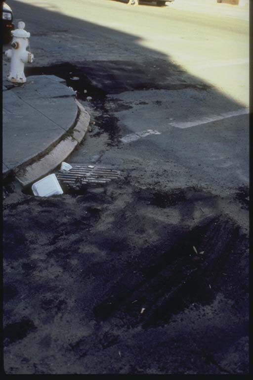 Evidence of Liquefaction in the Marina District, San Francisco