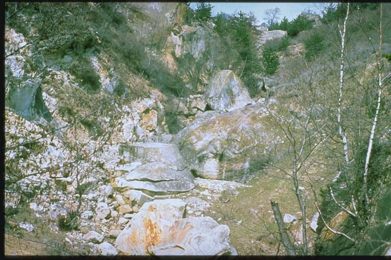 Rockfalls in the Buzau Mountains caused by March 1977 earthquakes