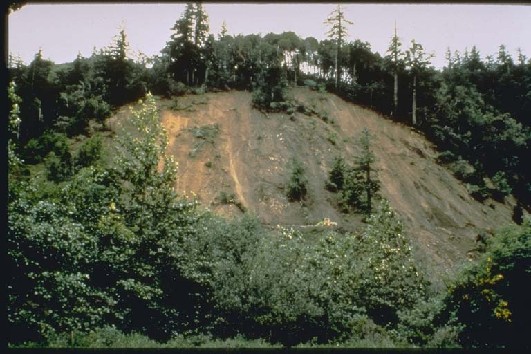 Landslide on Mattole Road