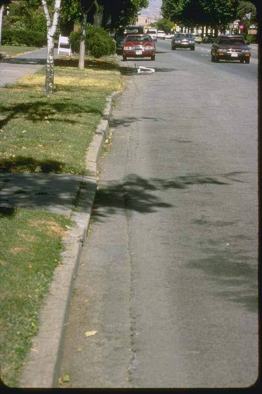 Wavy curb produced by seismic creep