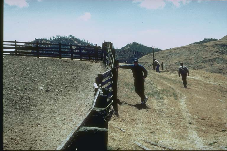 Distorted Fence, Melendy Ranch