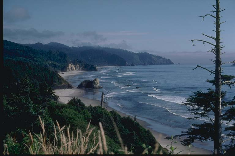 Headlands and sea stacks on Oregon coast