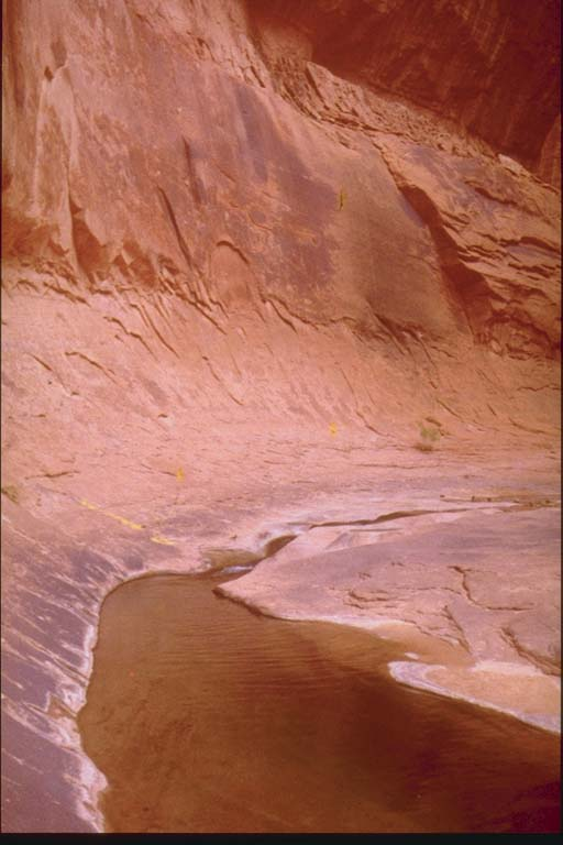 Alcove in canyon wall, Lake Powell, Arizona
