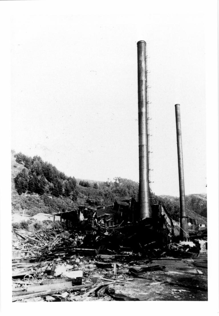 Remains of the whaling plant in Caleta San Carlos