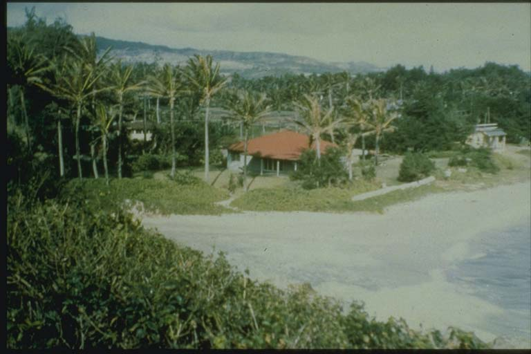 Hawaiian Beach before Arrival of 1957 Aleutian Tsunami