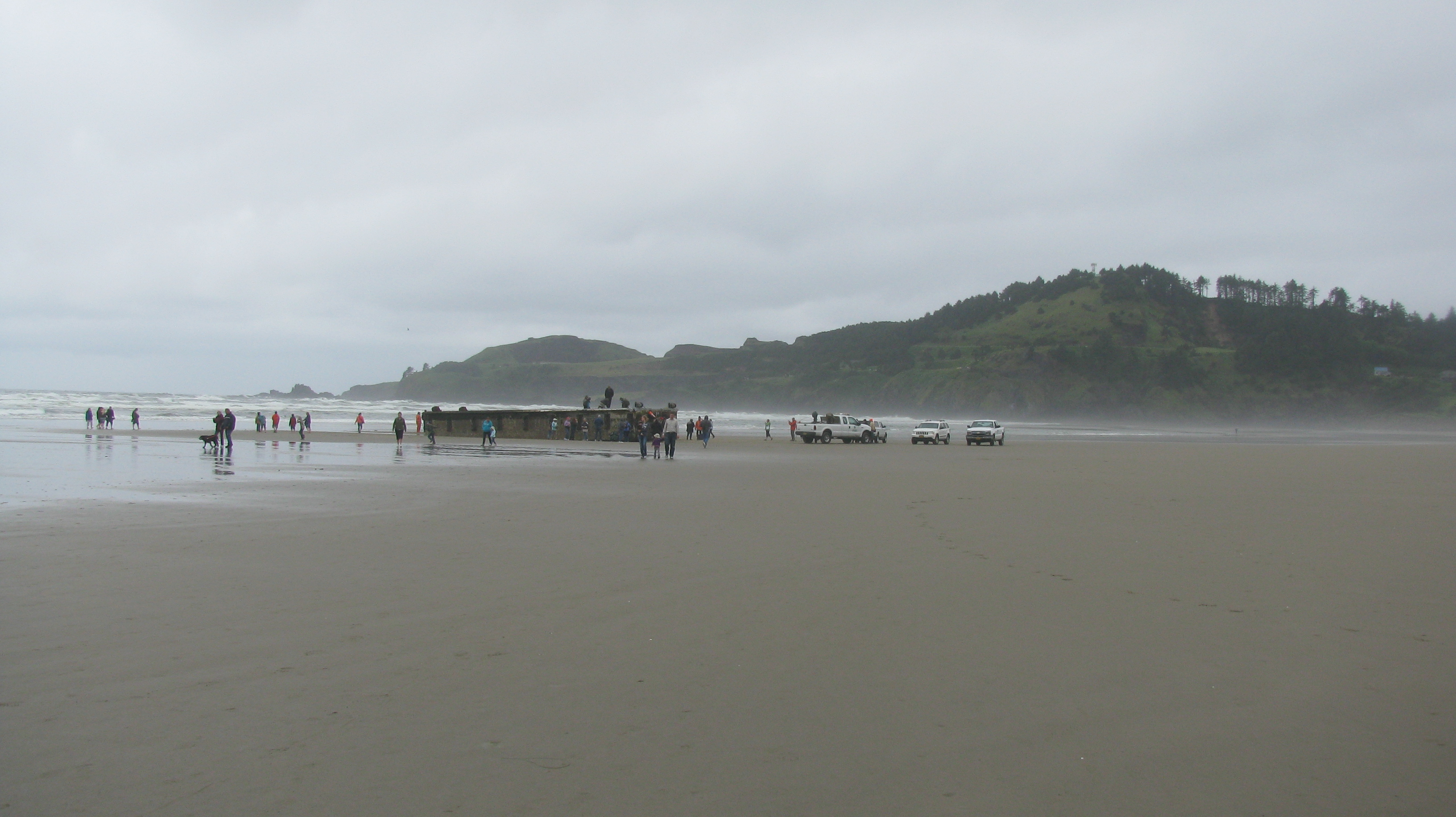 Dock debris arrives in Oregon  from Japan
