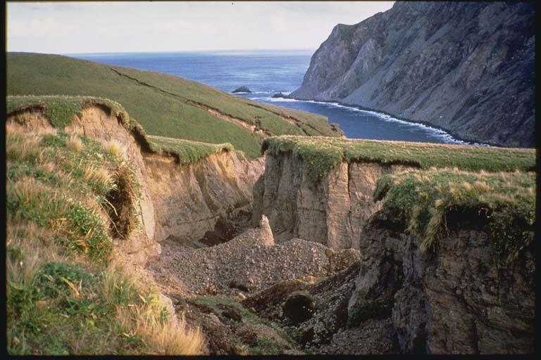Landslide Scarp