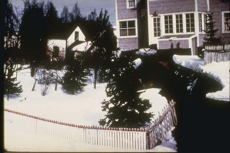 """Scarp in """"L"""" Street Slide, Anchorage, Alaska"""