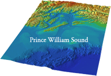 perspective view of Prince William Sound DEM