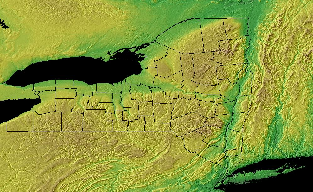 What parts of the state are flat? (Auburn, Plattsburgh: apartment ...
