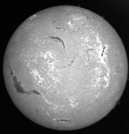 Browse image of the sun in H-alpha from the NOAA Boulder Solar Observatory (unknown date).